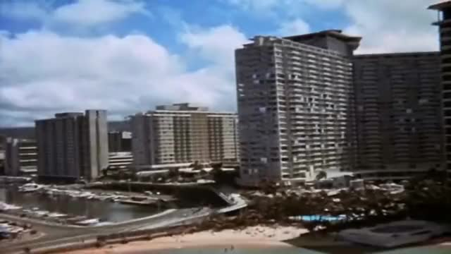 Watch Jack Lord Book'em Danno Hawaii Five 0 GIF by $$$ (@kennysmith30) on Gfycat. Discover more related GIFs on Gfycat