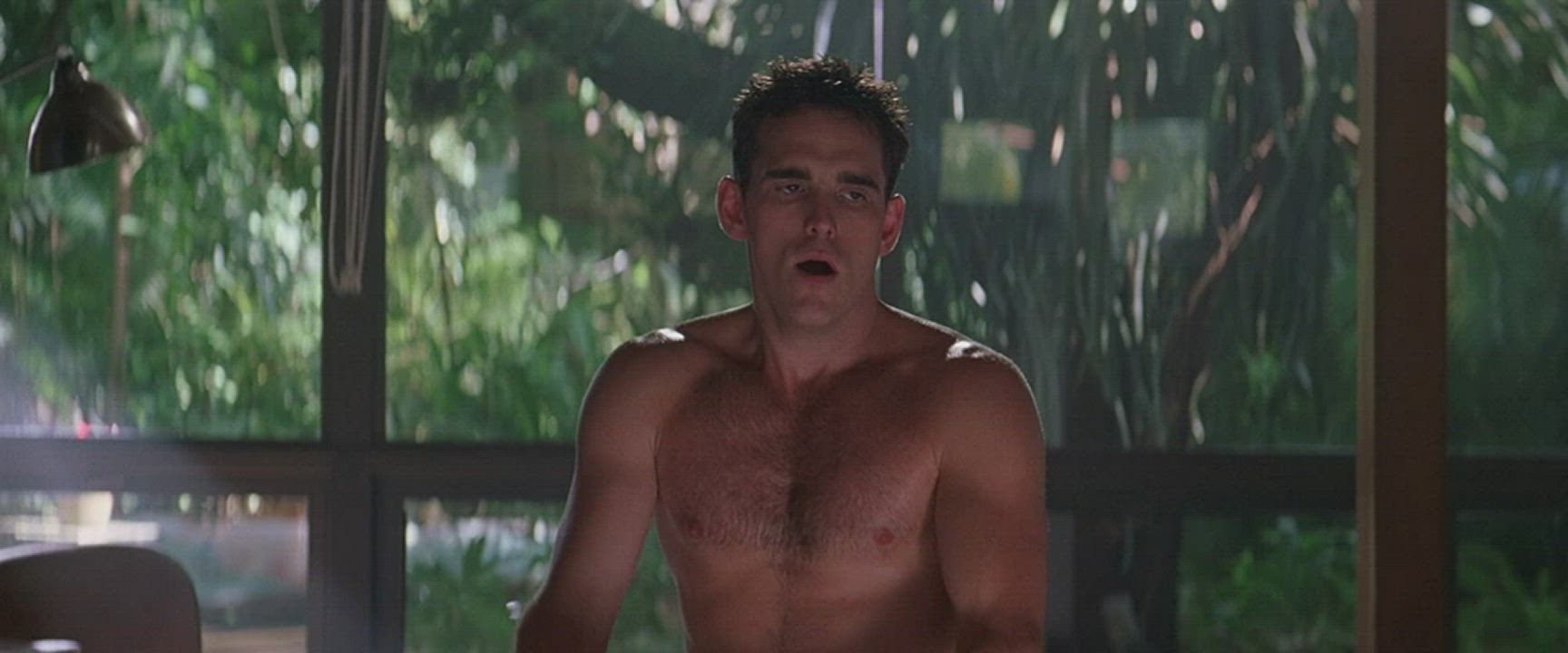 """Denise Richards in """"Wild Things"""""""