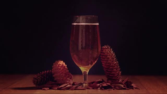Watch beer GIF by Danail Marinov (@loopstatic) on Gfycat. Discover more related GIFs on Gfycat