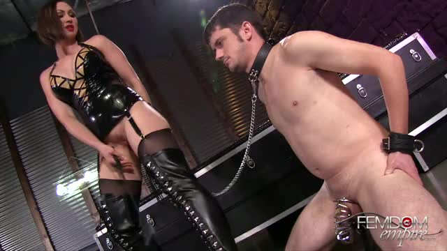leashed for a reason