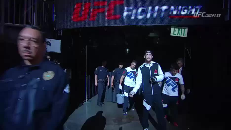 mmamemes, UFC in charge of cameras 2 GIFs