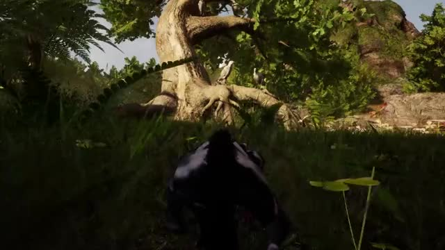 Watch Sugar Glider Climbing Tree GIF by Breaking Walls (@breakingwalls) on Gfycat. Discover more AWAY: The Survival Series, Indie Game, Sugar Glider GIFs on Gfycat