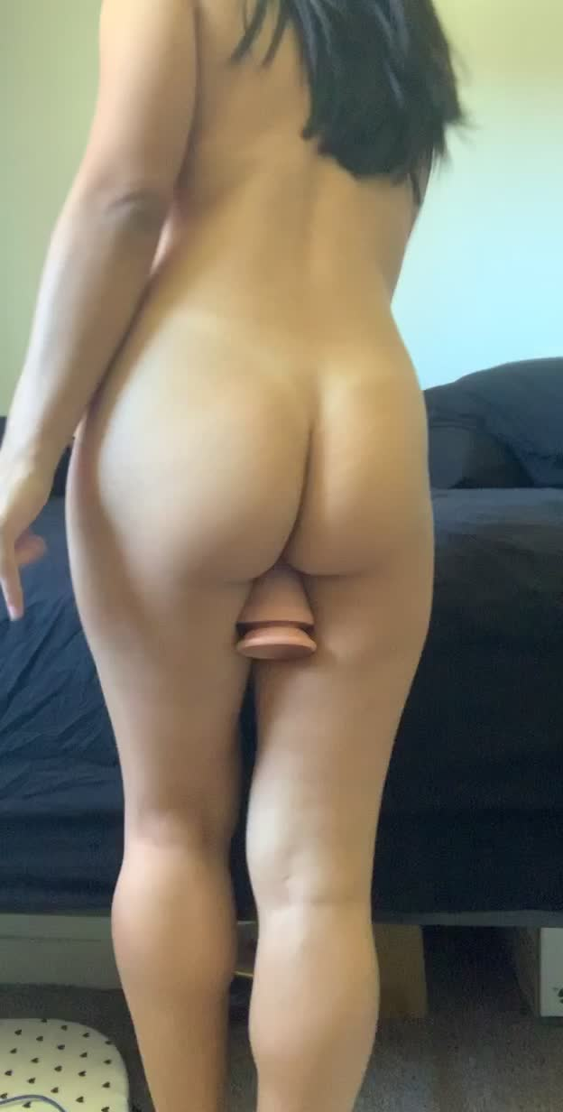 my cute little arse  a large toy