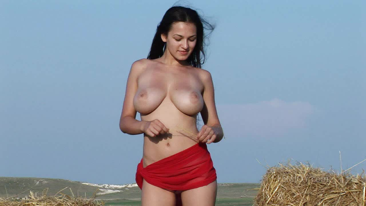 Hay stacked