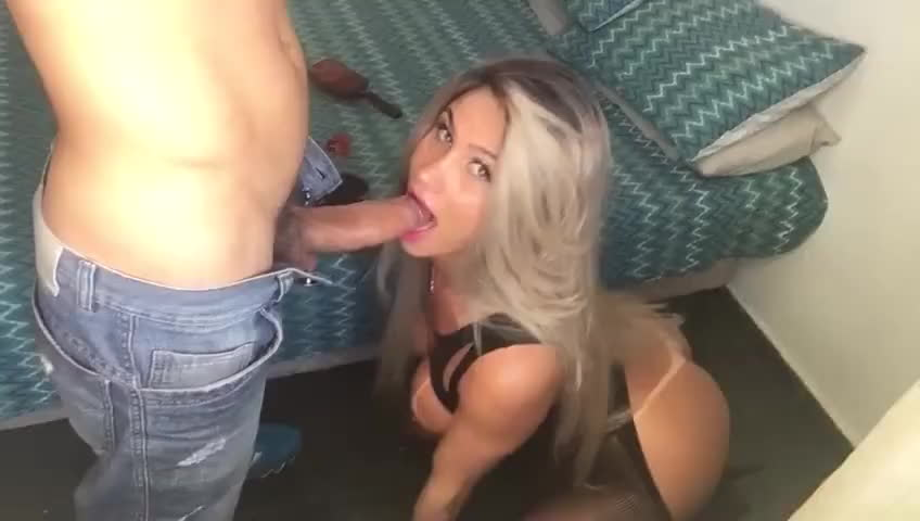 Girl sucks cock on all fours have