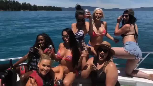 Watch Total Divas GIF by @molokai on Gfycat. Discover more related GIFs on Gfycat